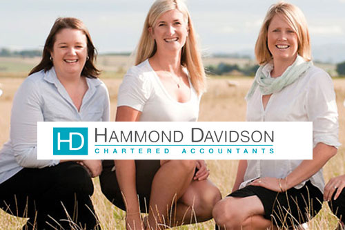 Hammond Davidson Chartered Accountan