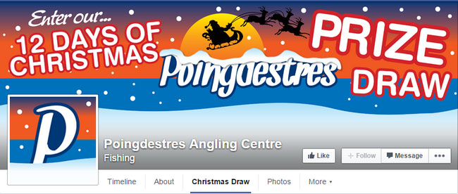 Poingdestres Facebook Christmas Cover Image