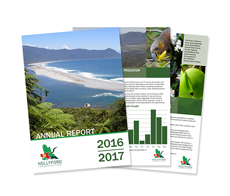 Hollyford Brochure by Cre8ive